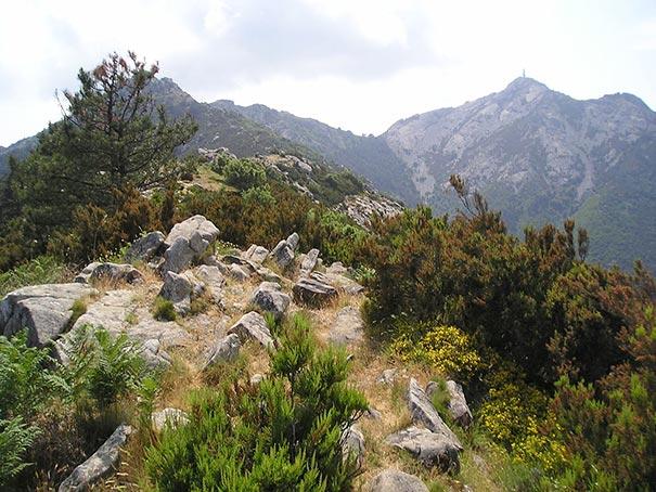 Monte Capanne auf Elba