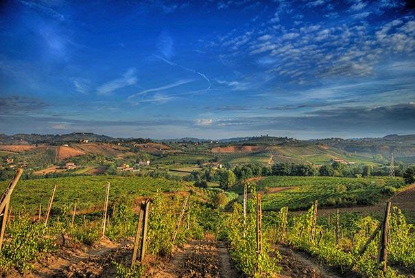 Weinanbaugebiet Chianti Toskana- eine der schönsten Landschaften der Toskana