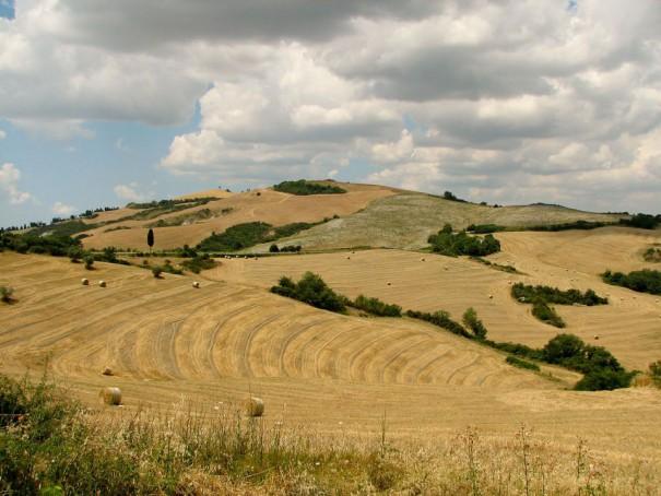 Toskana-Urlaub für Genießer