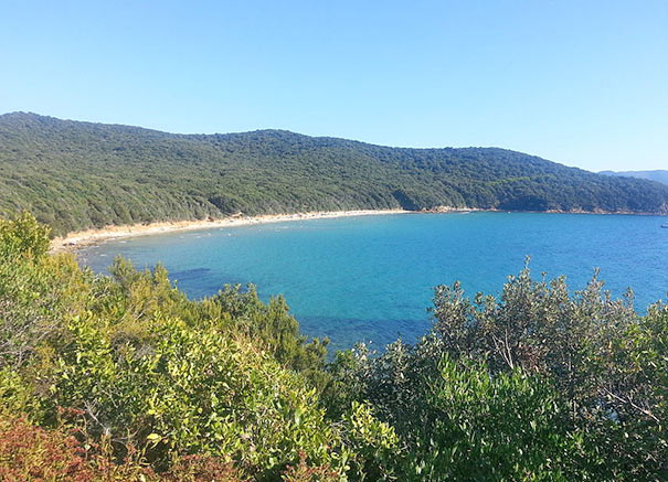 Bucht Cala Violina