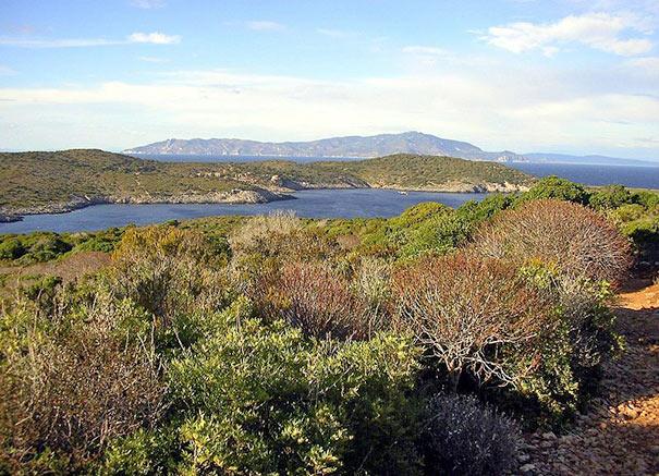 Bucht Spalmatoi auf Giannutri