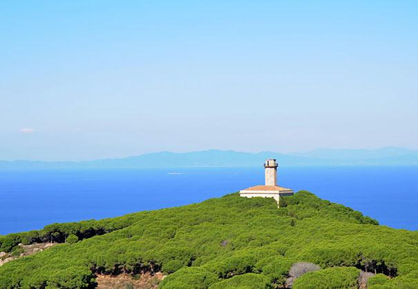 Giglio Leuchtturm