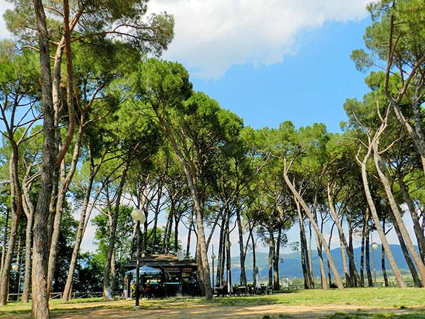 Park Prato in Arezzo