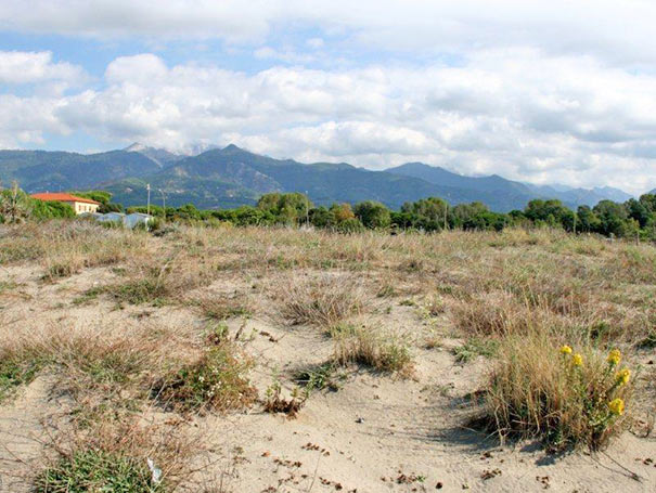 Naturschutzgebiet in Forte dei Marmi