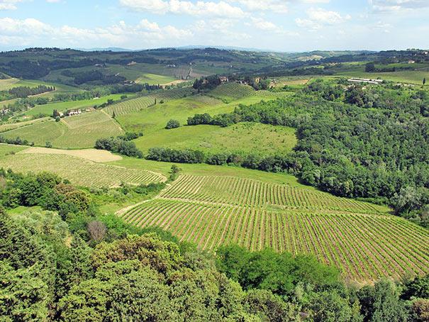 Montespertoli Landschaft