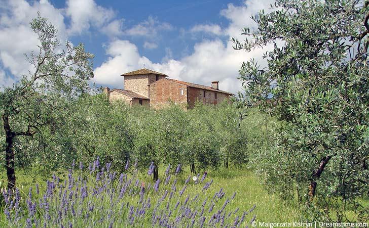Ferienhäuser & Ferienwohnungen in Asciano