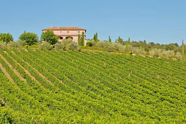 Weingut im Chianti