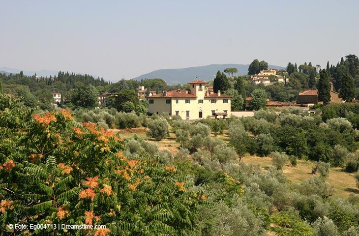 Ferienhäuser & Ferienwohnungen in Lido di Camaiore