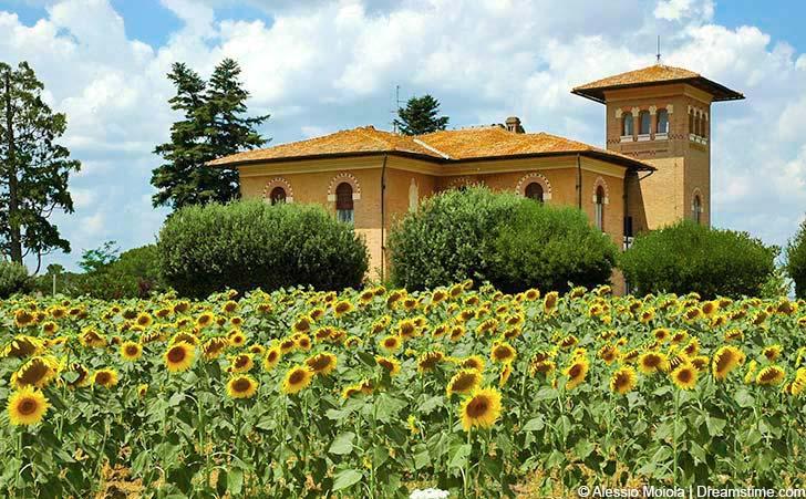 Ferienhäuser & Ferienwohnungen in Barberino Val d'Elsa
