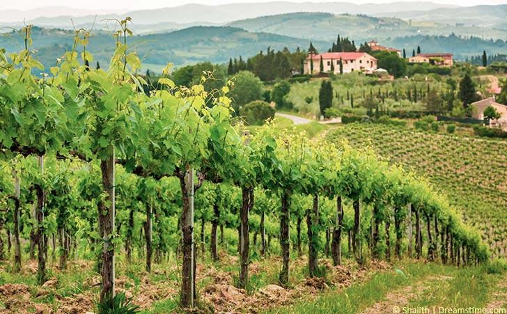 Ferienhäuser & Ferienwohnungen in Castagneto Carducci