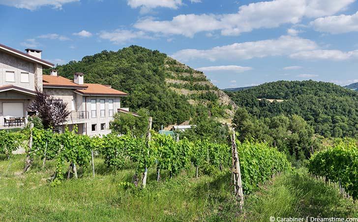 Ferienhäuser & Ferienwohnungen in Figline Valdarno