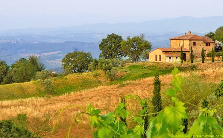 Ferienhäuser und Ferienwohnungen in Tavarnelle Val di Pesa