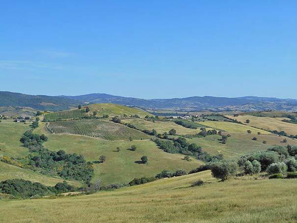 Aussicht auf die toskanischen Hügel bei Cinigiano