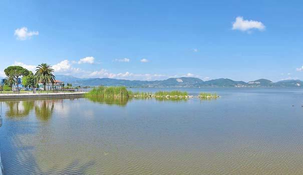 Der Lago di Massaciùccoli bei Massarosa