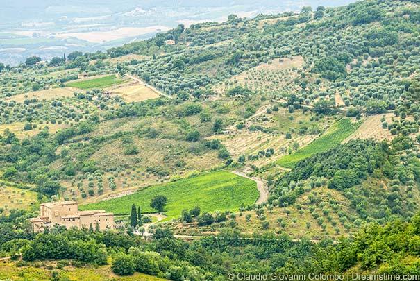 Blick über die Landschaft im Monte Amiata-Gebiet nahe Seggiano