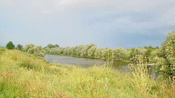 Fluß Arno