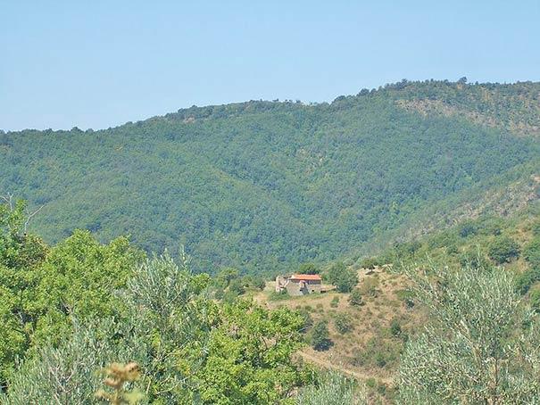 Hügelige Landschaft bei Castiglion Fiorentino