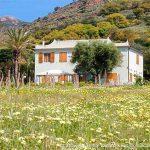 Ferienhaus in Porto Azzuro auf der Insel Elba