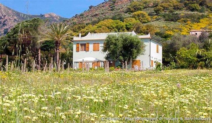 Ferienhaus auf der Insel Elba in attraktiver Villa