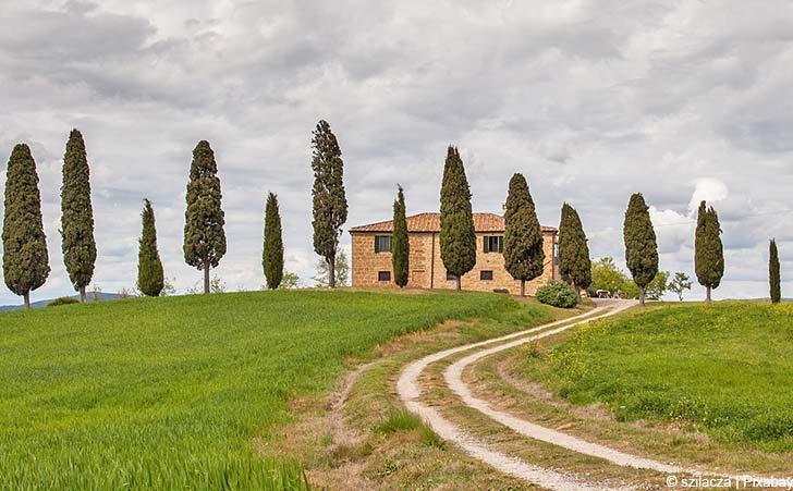 Ferienhäuser & Ferienwohnungen in Panzano in Chianti