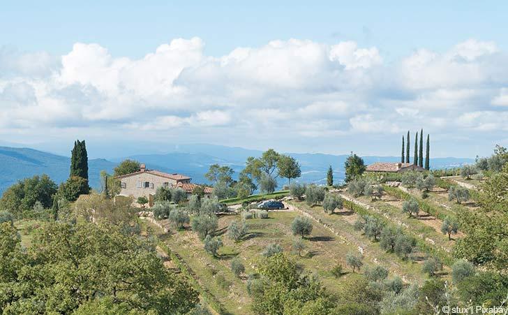 Ferienhäuser & Ferienwohnungen in Radda in Chianti