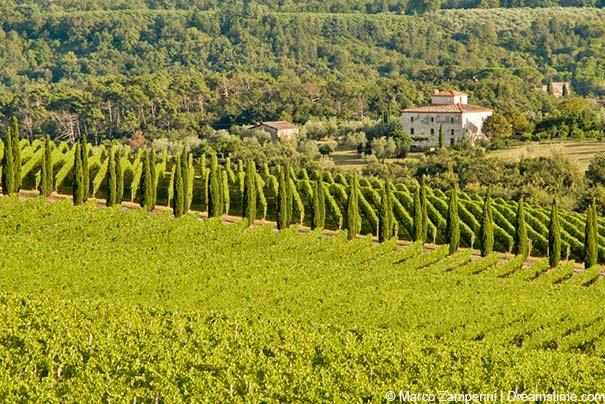 Chianti ist für Chianti-Weine weltweit bekannt.