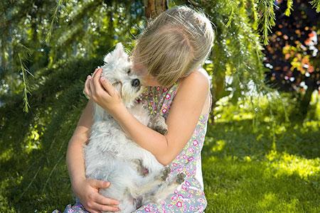 Ferienhäuser für Urlaub mit Hund im Chianti