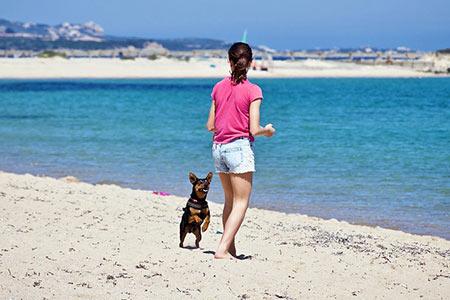 Ferienhäuser für Urlaub mit Hund in Viareggio