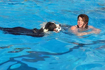 Ferienhäuser für Urlaub mit Hund in Portoferraio