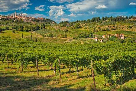 Urlaub auf dem Weingut in San Gimignano