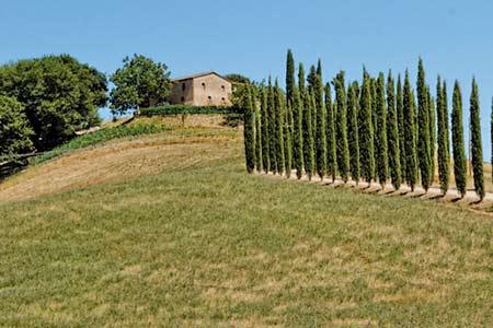 Agriturismo & Urlaub auf dem Bauernhof in Cortona
