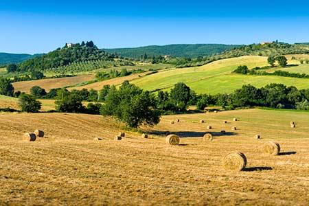 Agriturismo & Urlaub auf dem Bauernhof in Grosseto